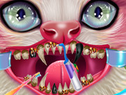 Kitty Dental Caring