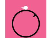 Circle Flip