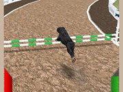 Dog Racing Simulator 3D