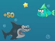 Безумная акула
