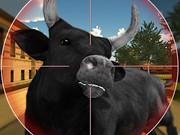 Охота на быка